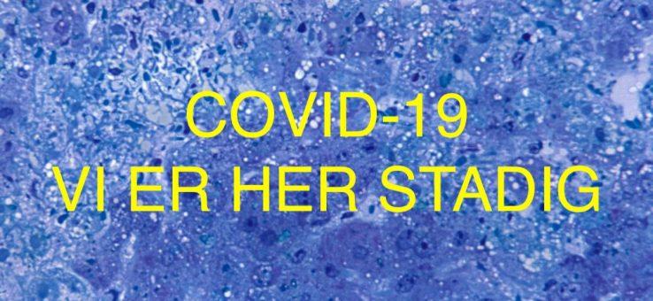 COVID-19 SUS